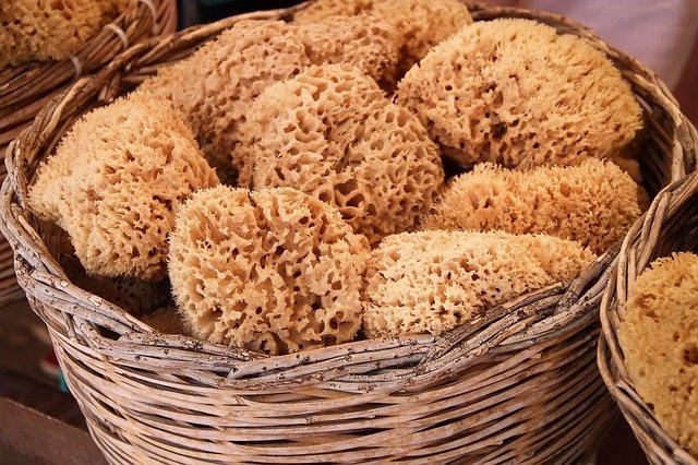 eco friendly alternatives to sponges