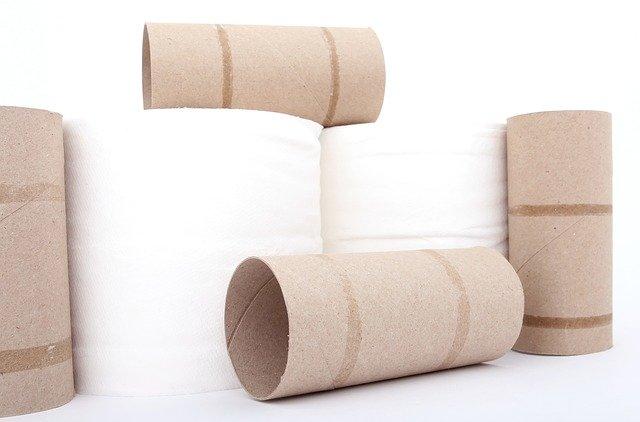 fastest dissolving toilet paper