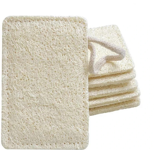 biodegradable eco-friendly alternatives to sponges
