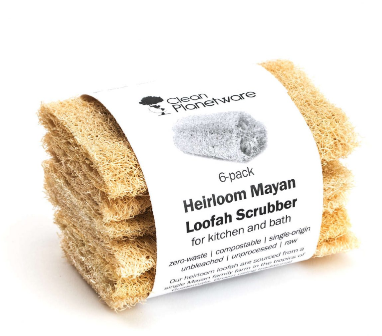 biodegradable eco-friendly alternatives to sponges