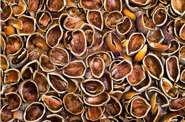 Nut shells material