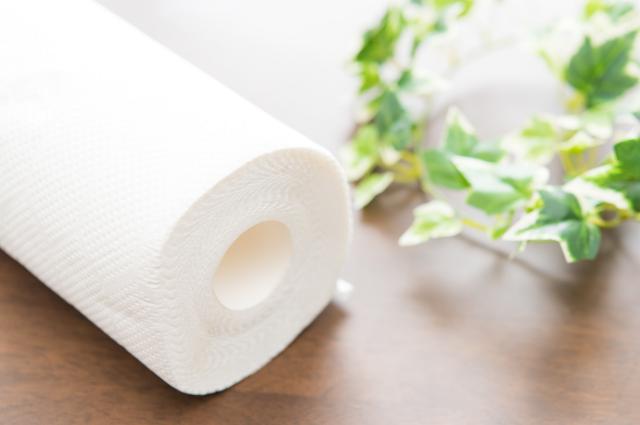 environment friendly plastic free paper towels